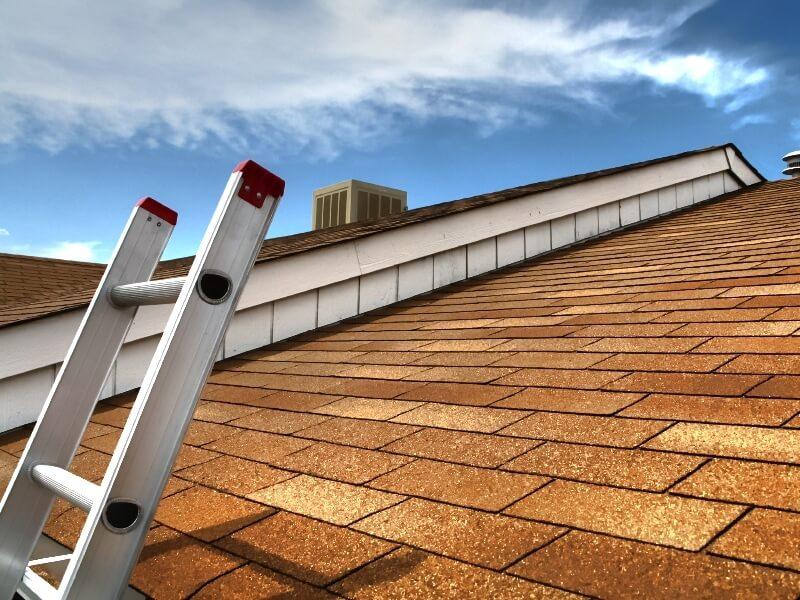 roof repair in Estero